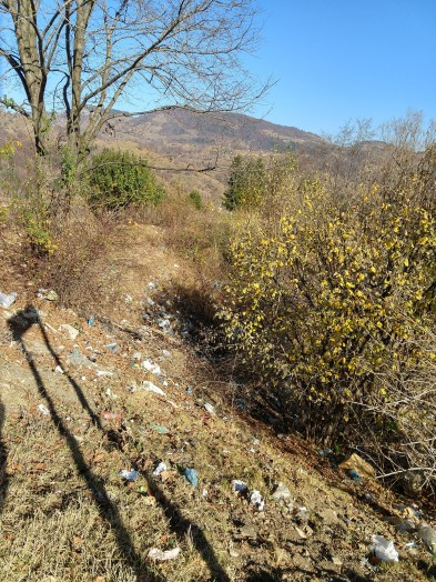But just looking around the turnoff, it is hard to understand why people would spoil the view with trash.