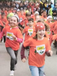 "Various races from ""Eco-Kid: events to ultra mountain marathon have been held throughout the region."