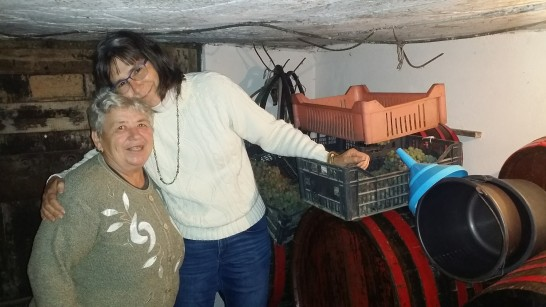 Mariora keeps grapes in the cellar.