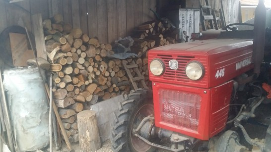 A small tractor and stacks of firewood show that Gavrila and Mariora have done well after the Revolution.