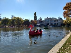 Imaginative paddle boats.